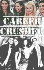 Career Crusher (Cameron Boyce x Reader) by P_LunaMoon