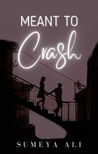 Meant to Crash cover