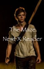 The Maze (Newt X Reader) Book 1 - complete  by carrot_top2015