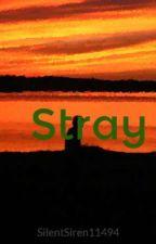 Stray by SilentSiren11494