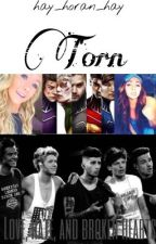 Torn [One Direction AU] {DISCONTINUED} by hay_horan_hay
