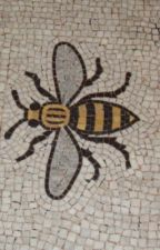 The Bees of Cottonopolis  [Synopsis] by mikederbyshire