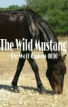 The Wild Mustang cover