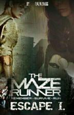 ESCAPE I. [the maze runner] od Papaya666