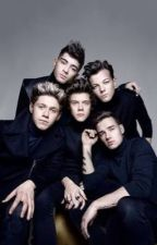 One Direction Preferences 3 by Rockstarlover15