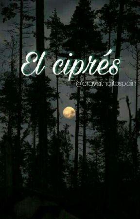 J & R: El Ciprés by circlevision7