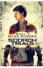 The Scorch Trials: Never Look Back ~ Newt X Reader by Obtained