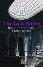 The Lost Potter by read_write_thrive