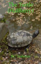 The Turtle (halbarry) by tashiniii