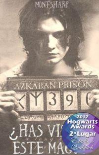 ¿Has visto a este mago? I - Slytherin cover