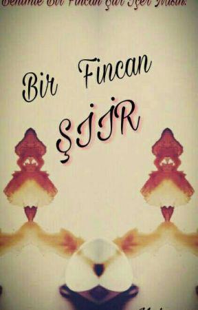 BİR FİNCAN ŞİİR by muhev15