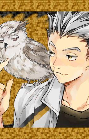 koutaro bokuto story smart owl