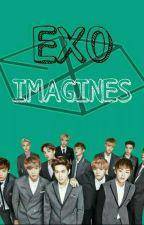 EXO x Reader Imagines by aandrxx