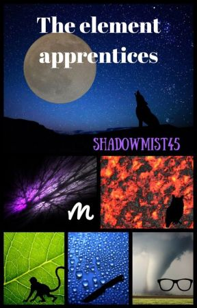 The Element apprentices (a BBS fanfic) by Shadowmist45