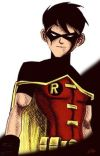 Robin's Allergies (A Young Justice Fan Fiction) cover