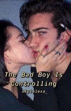 The Bad Boy Is Controlling by skylalexa_