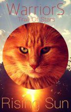 Rising Sun- A Warrior Cats Fanfiction ✔️ by Swiftblaze_