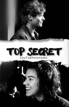 Top Secret (Larry AU) by xPinkMochix