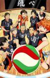 Haikyuu!! x Reader cover