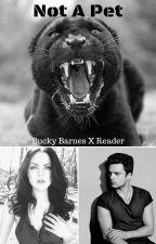 Not A Pet - Bucky Barnes X Reader by BerjhawnGideon