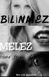 Bilinmez (Melez) cover