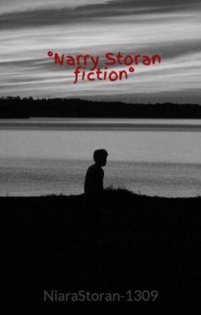 °Narry Storan fiction° by NiaraStoran-1309