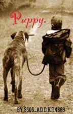 Puppy. by 5sos_addict4689