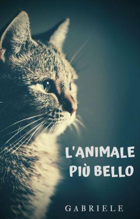 l'ANIMALE PIÙ BELLO by Oo_Gabriele_oO