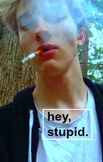 hey, stupid { gay }