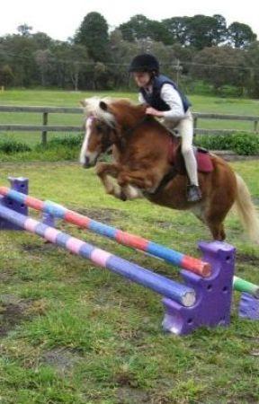 size dosen't matter by horsezzareawsome
