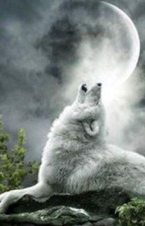 The Luna's Demon Wolf by FireDragonWolf