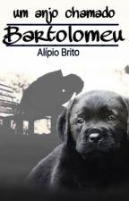 Um anjo chamado Bartolomeu by alipiobrito