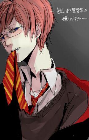HP: Khi huynh trưởng gặp được nữ vương - Hoàn by Kannie