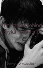 The secret behind Skylar Valentine by larrysaiditwasfine