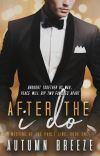 After The I Do : Meeting At The Fault Line Book #1 ✓ (available for purchase) cover