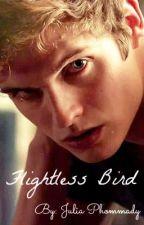 Flightless Bird ~ An Isaac Lahey Love Story by Julia_Sweater