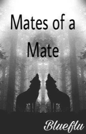 Mates of a Mate (bxbxbxbxb) by blueflu