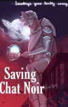 Saving Chat Noir cover