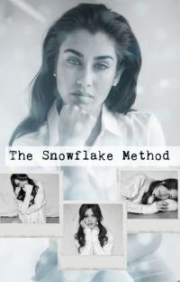 The Snowflake Method cover