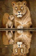 The Mirror by RoaringEagle