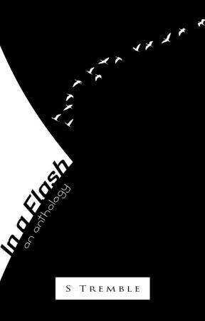 In a Flash (an Anthology) by kheprinmatu