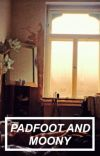 Padfoot and Moony cover