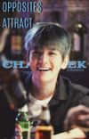 Opposites Attract 「ChanBaek」 cover