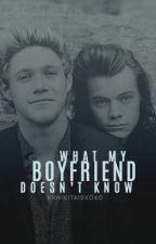 What My Boyfriend Doesn't Know |N.S| by xxNikita1dxoxo