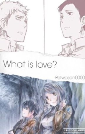 What is love? (Jean x Marco and Levi x Petra) by PetwaSan0000