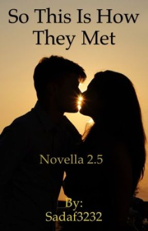 So This Is How They Met (Novella 2.5) by Sadaf3232