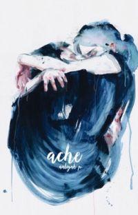 a c h e  ✓ cover