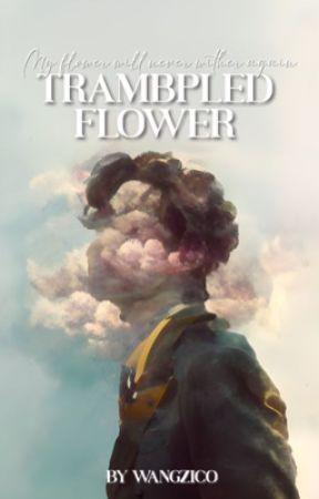 trampled flower » vhope [side FF] by wangzico