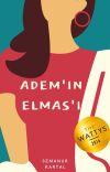 Âdem'in Elmas'ı TAMAMLANDI cover