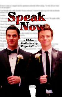 Speak Now (Klaine/Glee) cover
